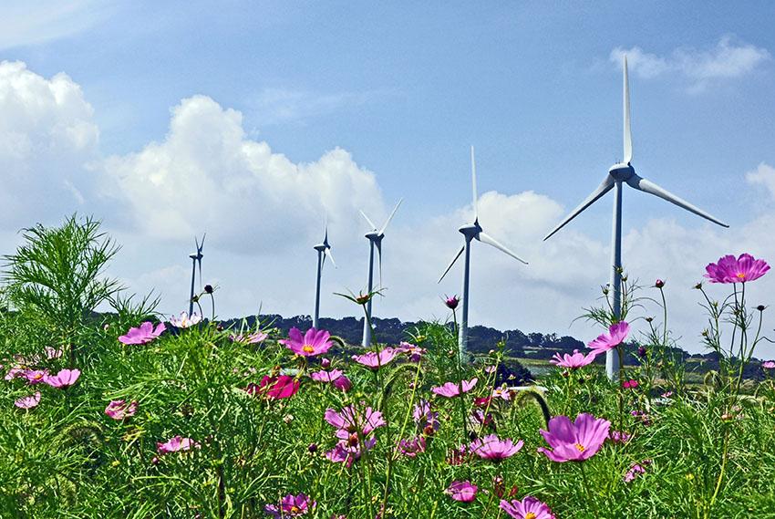 ⑨:秋の風力 関矢 俊夫 撮影場所:福島県郡山市 布引高原