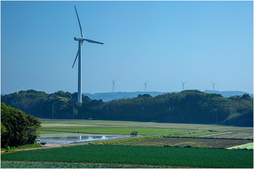 ⑥:風薫る季節 財満 眞千子 撮影場所:佐賀県東松浦郡玄海町