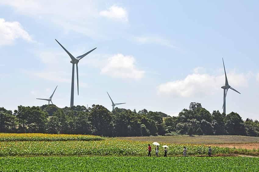 ②:夏の風車 関矢 俊夫 福島県郡山市・布引高原