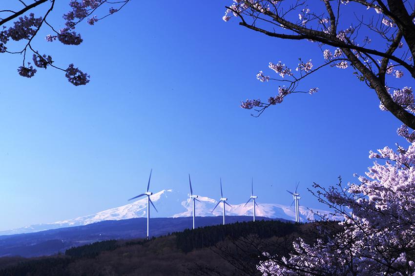 ①:早春 佐々木 利和 撮影場所:秋田県由利本荘市